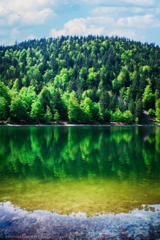 Lac des Corbeaux, La Bresse, Vosges