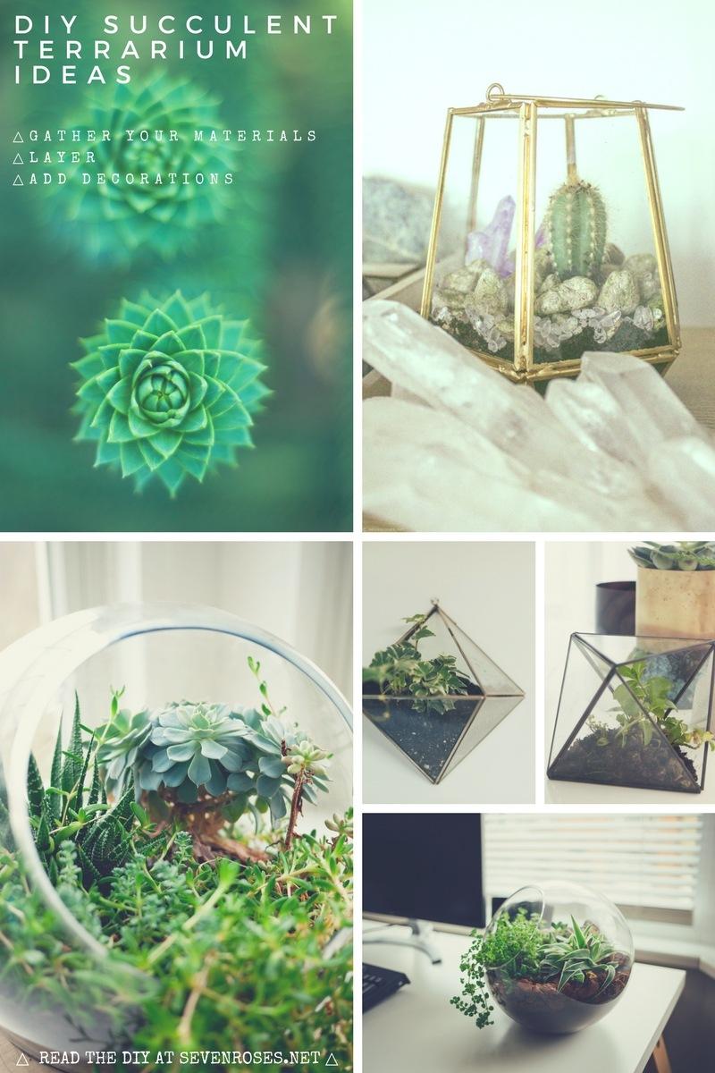 DIY Succulent Terrarium Ideas