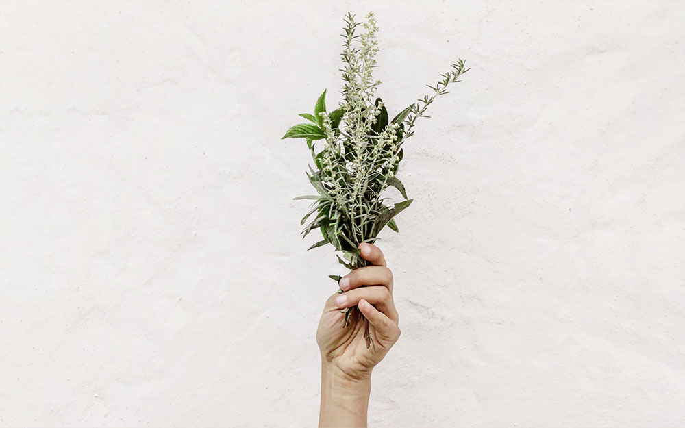 smells that make you feel happy: herbs