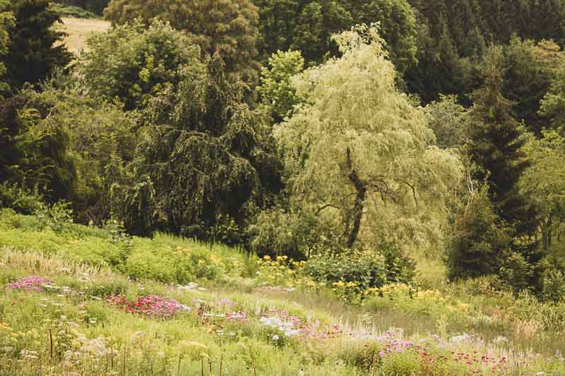 Jardin Bohèmien de Berchigranges