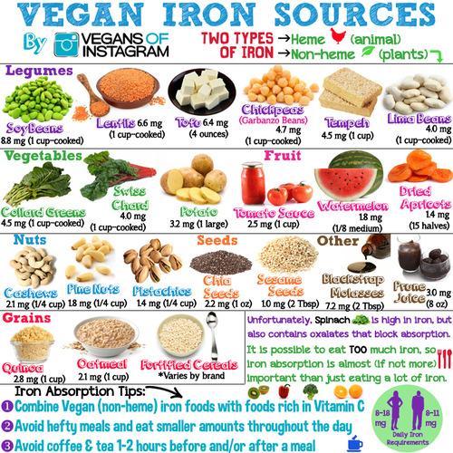 Vegan Iron Sources by Vegans of Instagram