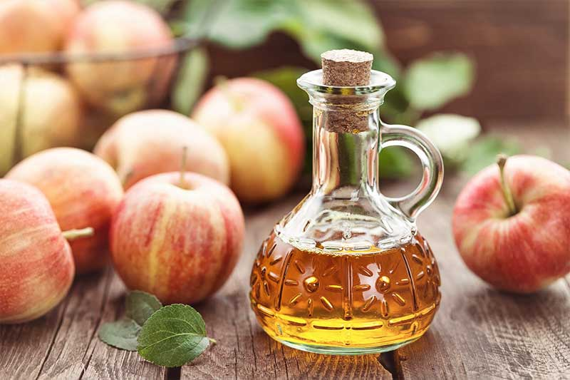 weight loss ingredients: apple cider vinegar