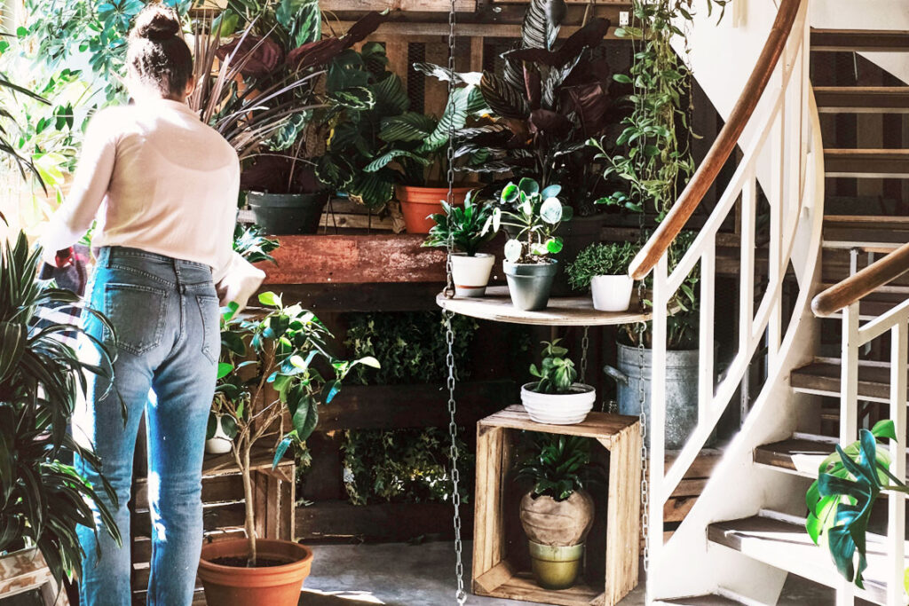 5 tips to go green at home