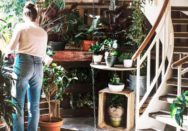 The best 5 tips for a greener at home: