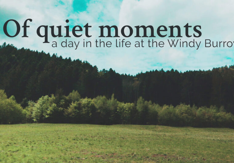 Of quiet moments - a day in the life at The Windy Burrow
