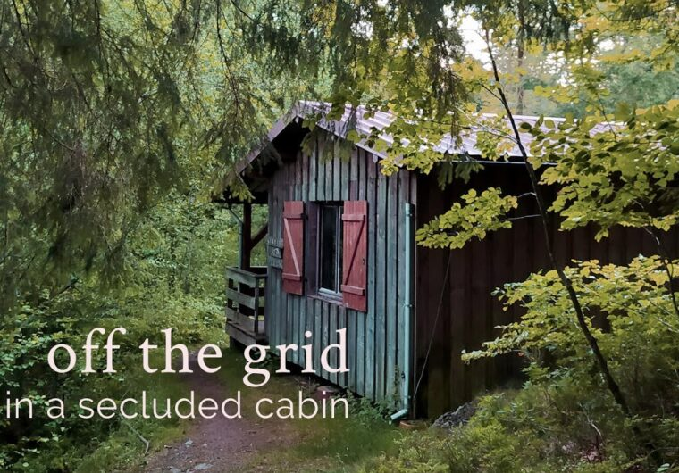 A weekend off the grid in a secluded cabin in the woods - new vlog